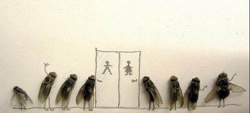 humor-with-dead-flies07